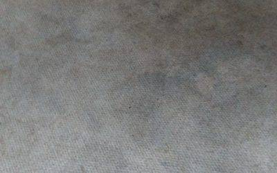 Lounge carpet steam cleaning in Lichfield
