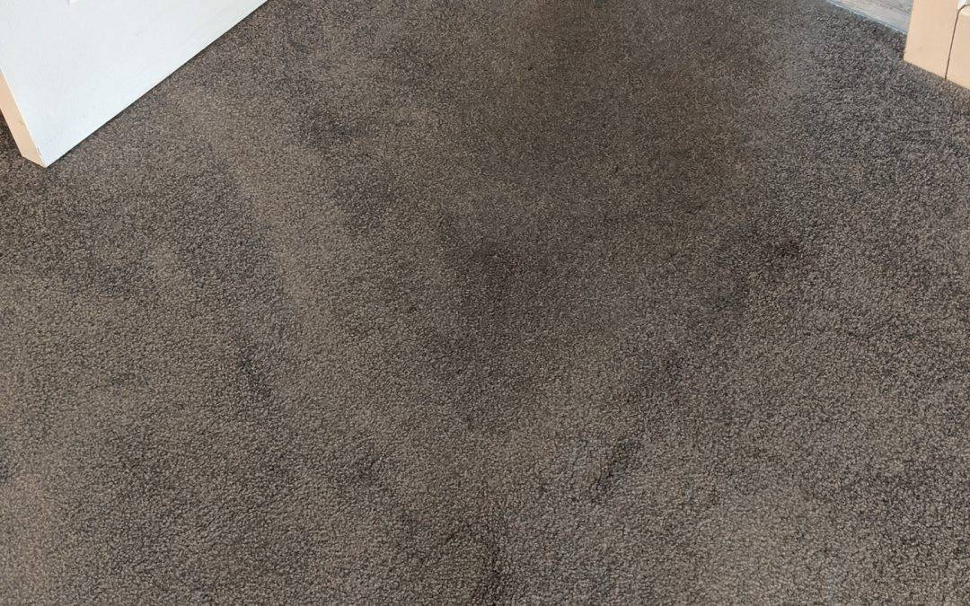 End of tenancy carpet cleaning in Lichfield