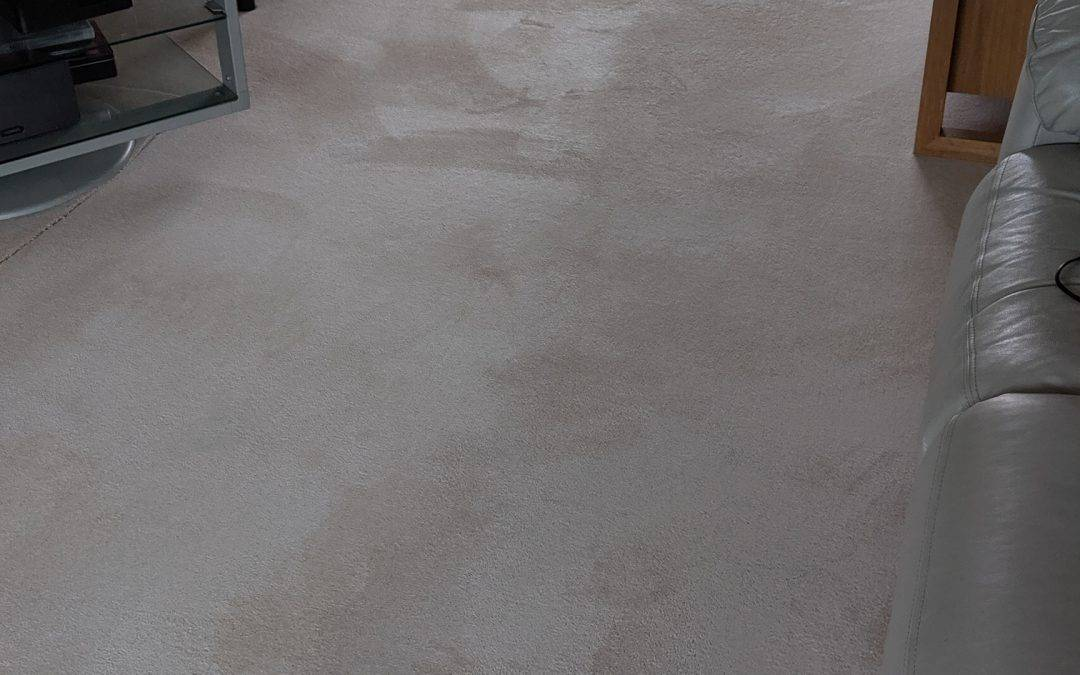 Carpet cleaner in Wylde Green – Sutton Coldfield