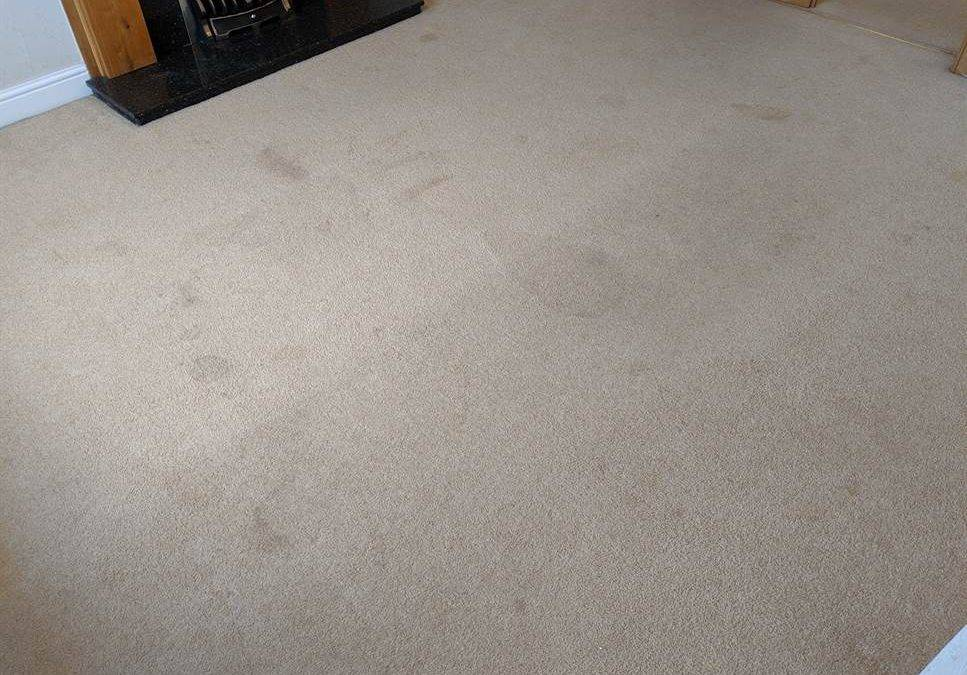 End of Tenancy Carpet Cleaning Tamworth