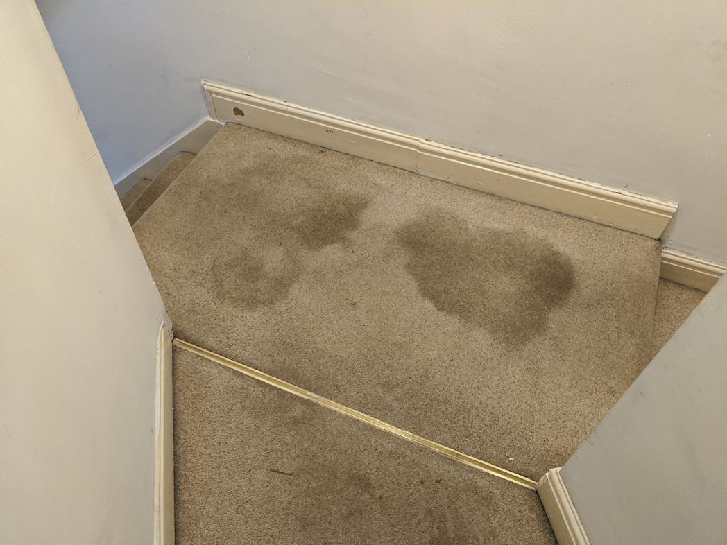 end of tenancy carpet cleaning tamworth (3)