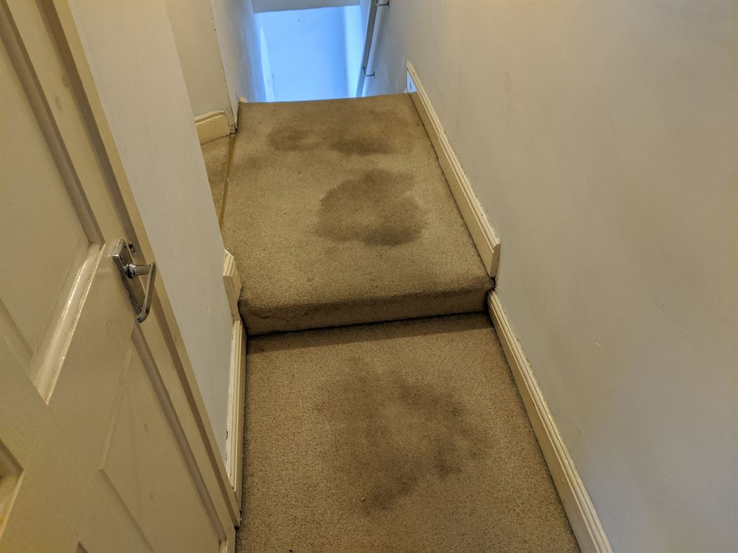 end of tenancy carpet cleaning tamworth (5)