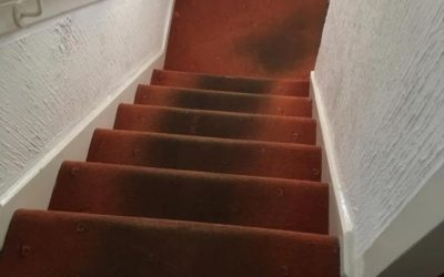 Lichfield Carpet Cleaner Cleaning Stairs and Landing Carpet in Lichfield